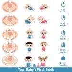 prvi zubići